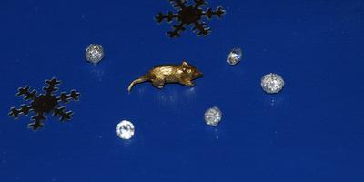 Кошельковая мышка - подарок на богатство))