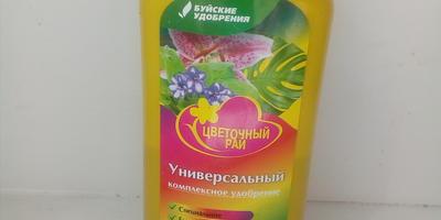 Петуния Василиса Премудрая F1. IV этап. Развитие растения и уход за ним