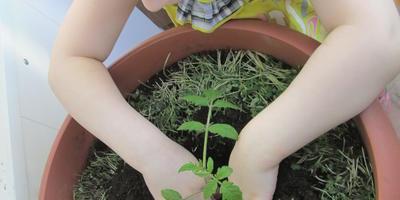 Семейный журнал огородников Заполярья. Сегодня у нас двойной праздник. А весна идет, и мы этому рады