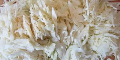 Вкусные котлетки из капусты