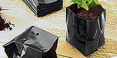 Пакеты для рассады - отличное решение для выращивания рассады овощей!