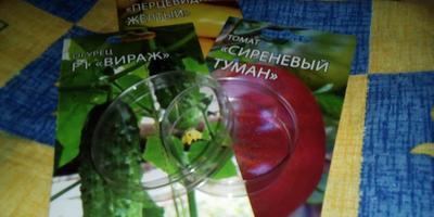 Помощник для проращивания семян - Чашка Петри
