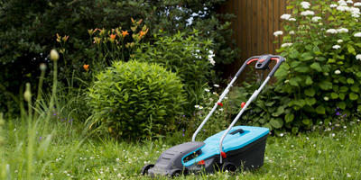 Урок 8. Избавляемся от сорняков в саду и огороде
