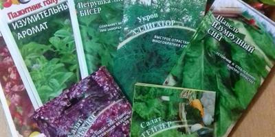 Отчет о получении посылки с семенами для тестирования от компании Гавриш