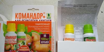Тестирование препарата Командор+. Обработка клубней картофеля