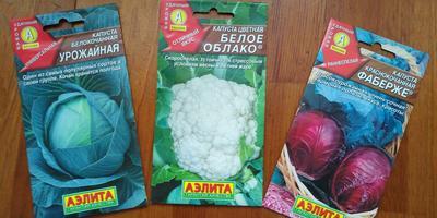Что же смогут увидеть космонавты из космоса на наших огородах от Агрофирмы АЭЛИТА???