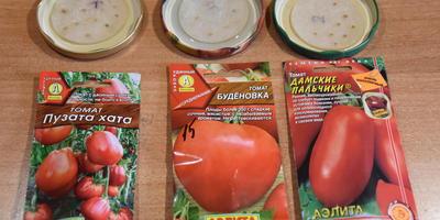 """3 марта посадила первую партию томатов от фирмы """"Аэлита"""""""