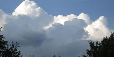 Облака - белогривые лошадки...