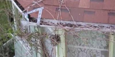 Под крышей дачной беседки появилось гнездо пернатого соседа. Июнь 2017 года