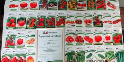 Подарки от агрофирмы Партнер. Лучший урожай томатов от Партнера