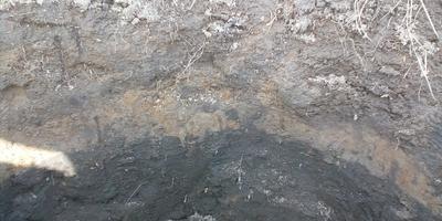 Что за слой земли черного цвета?