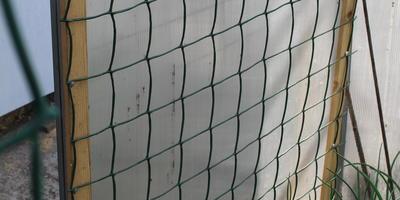 Защитная сетка для теплицы: как закрыть вход соседским котам