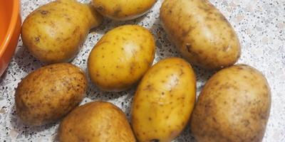 Полезный секрет быстрой чистки картофеля в мундире
