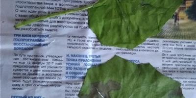 Пожалуйста, помогите распознать растения