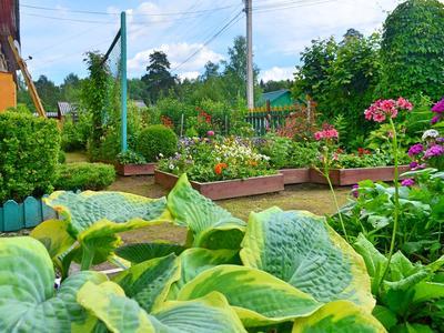 Конкурс садовых мастер-классов со STIGA