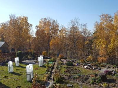 """Конкурс """"Зима близко"""", или Что делать в саду осенью"""