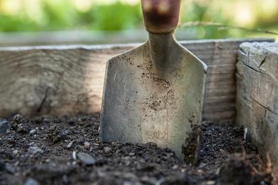 Подготовка почвенного субстрата. Фото сайта pixabay.com