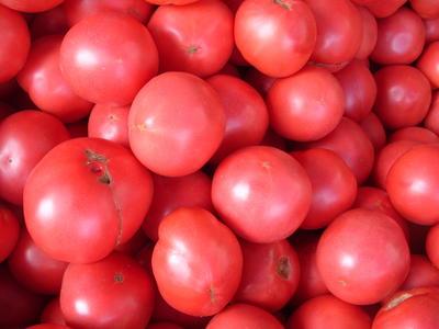 Средние розовые томаты, фото автора