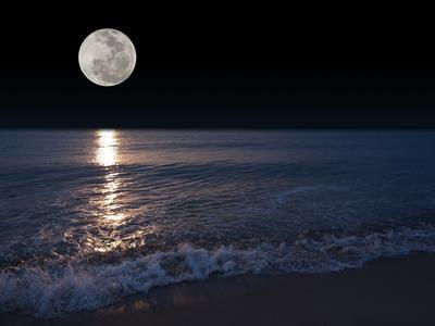 Морские приливы и отливы связаны с влиянием Луны