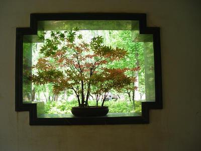 Дом открывается саду через окно, а сад через окно входит в дом