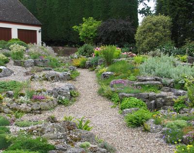 Полынь в каменистом саду