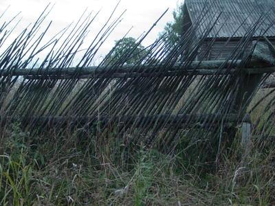 Для изготовления вертикального плетня можно использовать почти негнущиеся и даже сухие ветки