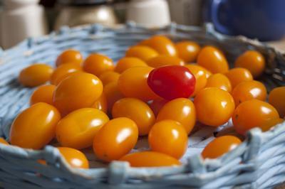 Очень долго помидоры считались несъедобными и даже ядовитыми
