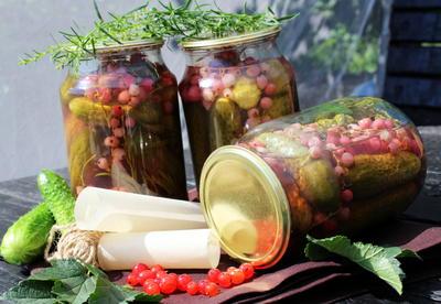 Соленые огурчики с красной смородиной и эстрагоном - пошаговый рецепт приготовления с фото