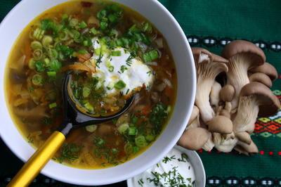 Губница (грибной суп) с вешенками - пошаговый рецепт приготовления с фото
