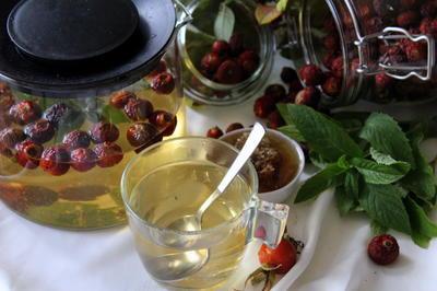 Чай из шиповника с мятой и медом. Полезные свойства. Рецепт, фото