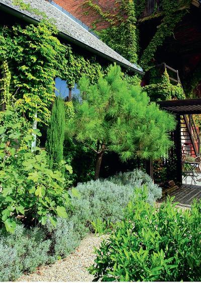 Садовую дорожку можно сделать насыпной