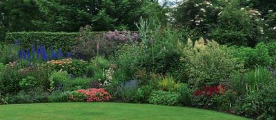 Цветники, эффектные в течение всего сезона, - результат вдумчивого подбора и сочетания растений