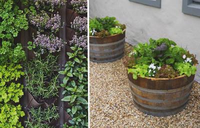 Слева: вертикальный садик пряных трав. Справа: растения в кадках могут быть и красивыми, и вкусными