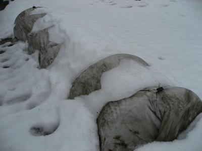 Зимнее укрытие макрофил