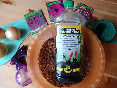 Для стимуляции семян любой субстрат лучше пропитатьБИО-комплексом Суспензия Хлореллы. Фото автора
