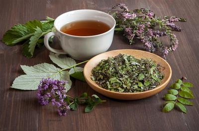 Витаминный чай-бальзам. Рецепт травяного сбора