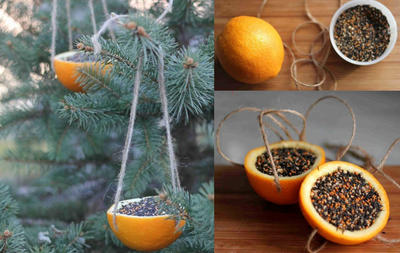 Апельсиновые кормушки. Фото с сайта: akademiarukodelia.ru