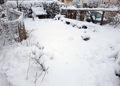 Огромная масса снега в год обильных снегопадов может укрытие сломать
