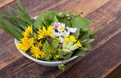Простые и вкусные блюда из дикорастущих растений: рецепты