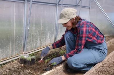 Утеплите грядки — и высаживайте рассаду еще раньше