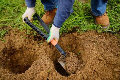 Тяжелую почву можно улучшить