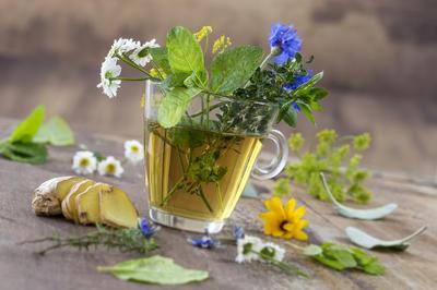 Какие травяные и фруктовые чаи можно купить в интернет-магазине Seedspost