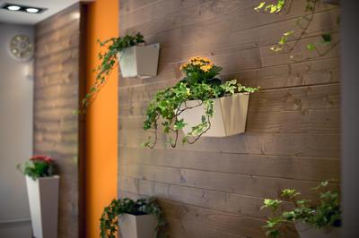 Доска отлично маскирует неровности стен и дополняет интерьер природными материалами