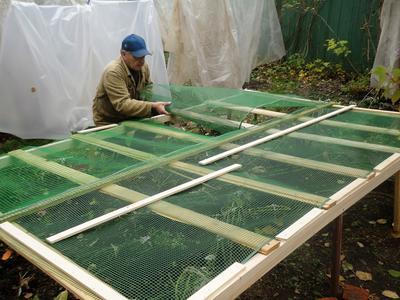 Дополнительно на каркас кладется садовая сетка с мелкой ячеей. Фото автора