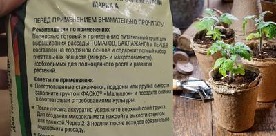 Состав грунта «Малышок» учитывает потребности пасленовых культур в макро- и микроэлементах, идеально подойдет для пикировки томатов. На упаковке также есть инструкция по посадке и уходу для начинающих