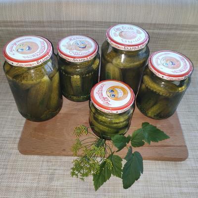 Отзыв о выращивании огурцов в парнике АгроЩит. Рецепт маринованных огурцов на зиму