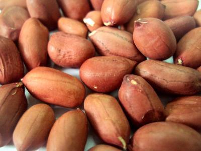 Земляной орех (арахис)