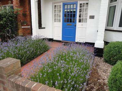 В маленьком саду. Стильный и лаконичный вариант для палисадника. Фото автора