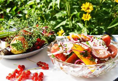 Салат из помидоров к шашлыку. Пошаговый рецепт с фото