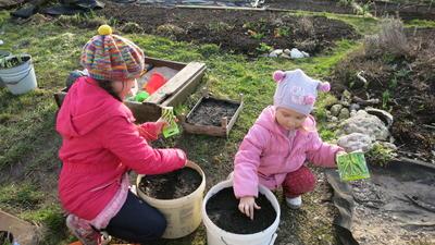 Это увлечение понравится даже детям. Фото из книги Огород в контейнерах